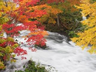 秋といえば紅葉!美しい景色に癒やされよう【中部編】