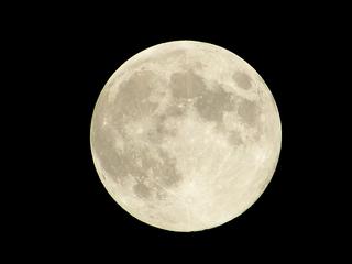 秋の夜長に星空を見に行こう!【関東編】