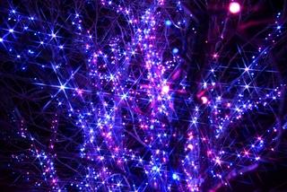 平成最後のクリスマスは美しい夜景を眺めながら――【東海地方編】